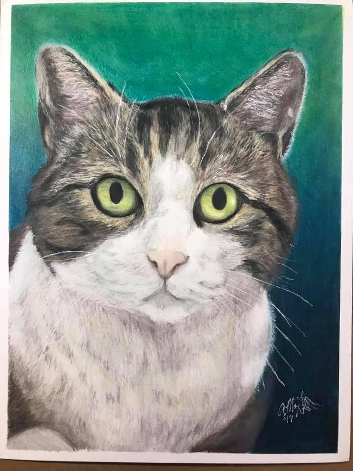 colored pencil drawing of gray and white cat facing foward against a green fading to blue background