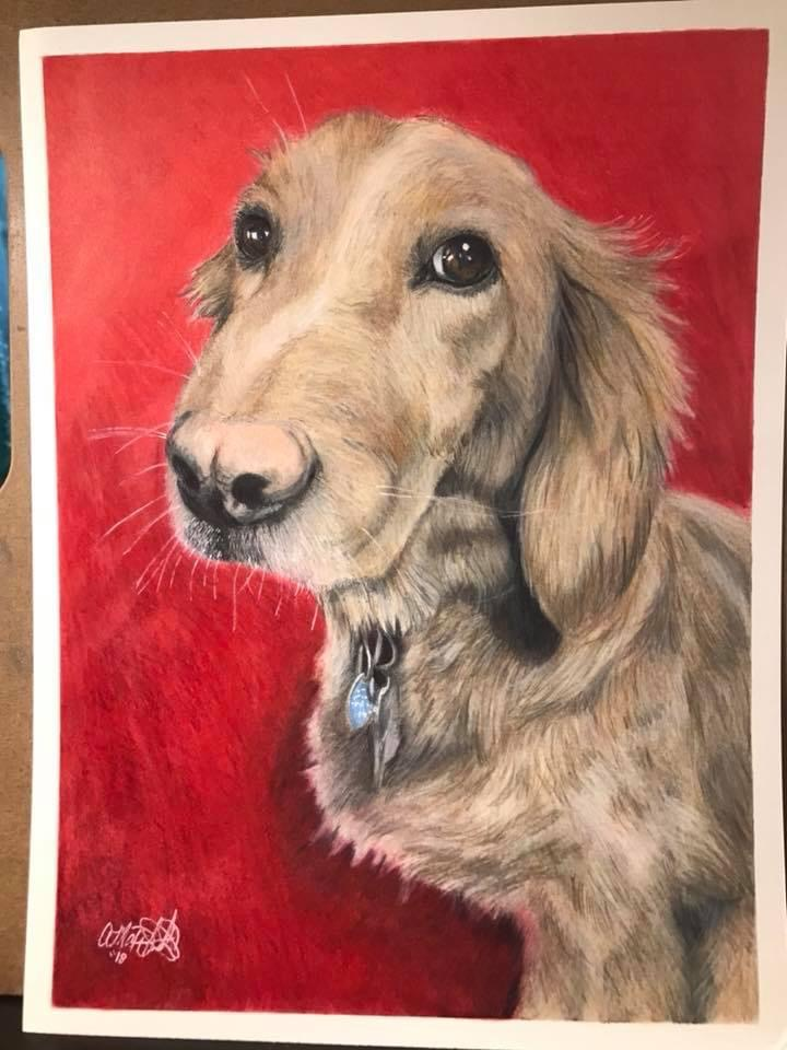 colored pencil art drawing of light tan dog facing front on a red background